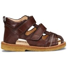 angulus-sandal-brown-brun