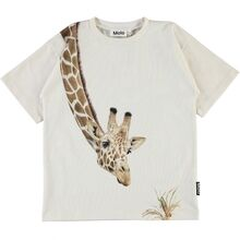 molo-road-tshirt-top-white-star-boy-dreng