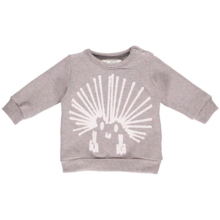 gro-sweatshirt-rosa-grey-aspects-graa