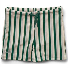 LW14132-Liewood-Otto-Swim-Pants-Stripe-Garden-Green-Sandy-Dove-Blue-Badebukser
