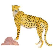 thats-mine-wall-stickers-wallstories-cheetah-gepard-08073