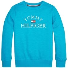 tommy-hilfiger-essential-logo-sweatshirt-exotic-teal-kb0kb05643-ctx-1
