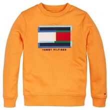 tommy-hilfiger-fun-artwork-sweatshirt-sunset-fruit-kb0kb05803-1