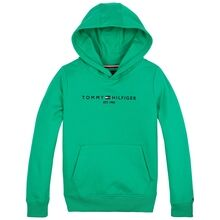 tommy-hilfiger-sweatshirt-sweat-essential-hoodie-cosmic-green-kb0kb05796-l3v-1
