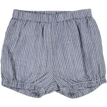 Wheat Cool Blue Stripe Olly Shorts