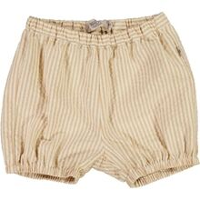 wheat-shorts-olly-6922d-430---5088-taffy-stripe